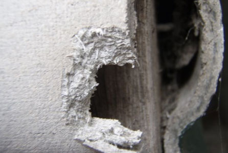 Asbestos identification asbestos removal services for Is there asbestos in old drywall
